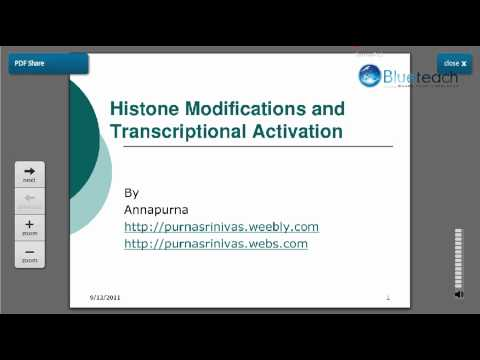 Role of Histone Modifications in Transcription