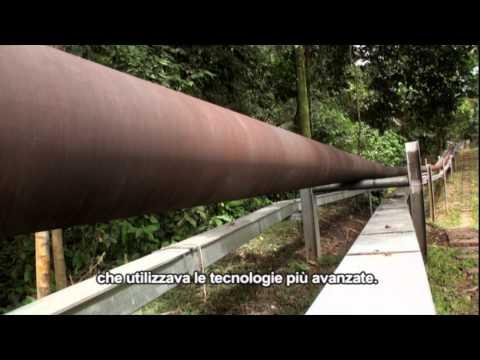 Adelante Petroleros - L'oro nero dell'Ecuador (italian subtitles version)