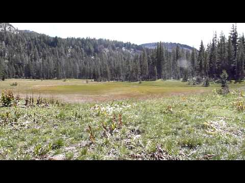 Gazing on Halfmoon Meadows from the Ten Lakes trail Video