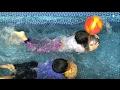 Berenang Sama Ikan Koi Di Kolam