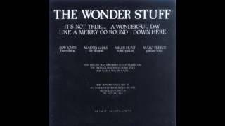 Watch Wonder Stuff Its Not True video