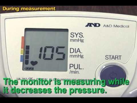 How to Measure a Dogs Respiration Rate pics