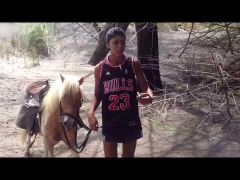 Aussie townie cousins on a NZ Horse Riding Adventure
