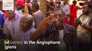 Cameroon Elections Report
