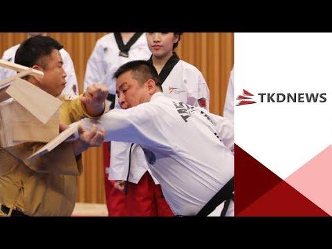 WT - ITF 남북 태권도 서울시청 합동공연 thumbnail
