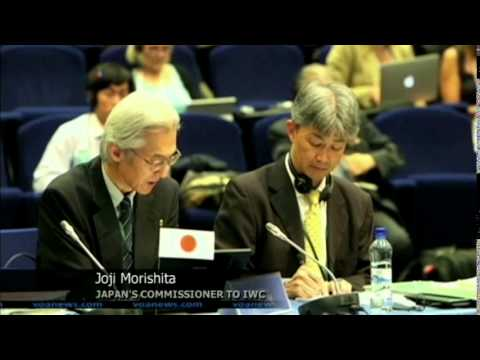 Whaling Summit Votes To Uphold Ban on Japan Whale Hunt