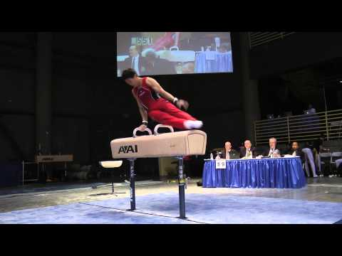 Timothy Wang - Pommel Horse - 2012 Winter Cup Prelims