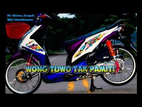 Video Pendek Cocok Buat Story WA..anak Racing !!! #1