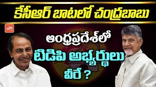 Chandrababu Follows KCR Strategy in AP Elections | AP TDP MLA Candidates List
