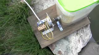 Homemade fish food feeder for aquarium or pond