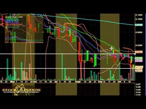 QASP Stock Chart Video