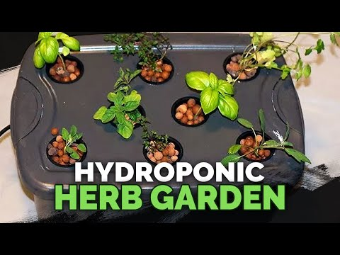 Full Hydroponic Herb Garden Guide  By Epic Gardening