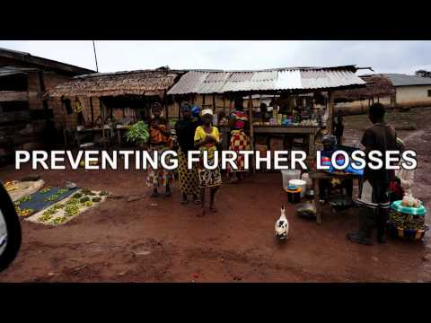 WEST AFRICA EBOLA EMERGENCY