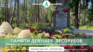 ПАМЯТИ ДЕВУШЕК-ЛЕСОРУБОВ. Мемориал во Всеволожском лесничестве планируют «одеть» в гранит