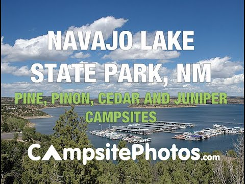 Navajo Lake State Park Pine Main Campground, NM  Campsite Photos