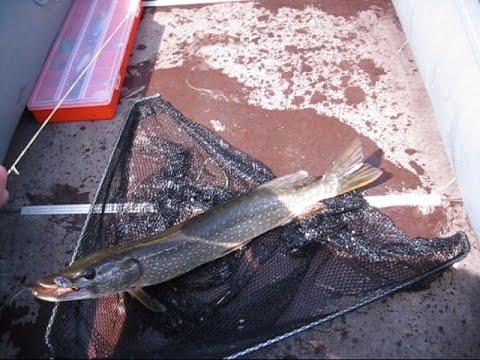на рыбалку всей семьей на урале