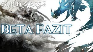GW2 Beta &#8211; Review Fazit! Solltet ihr es spielen?