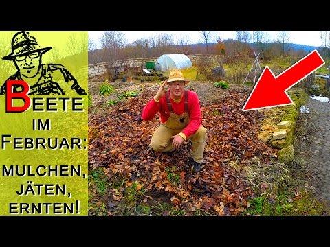 Garten Im Februar: Beete Vorbereiten Und Letzte Ernten
