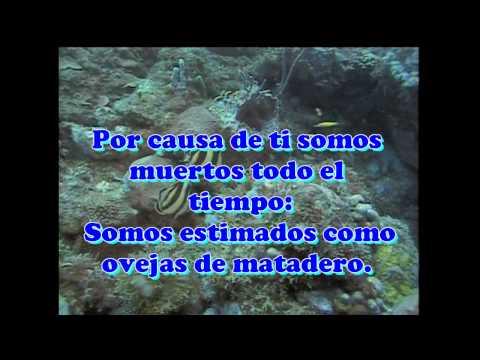 IECE TRIUNFANTE HASTA EL FINAL Grupo Jehiel
