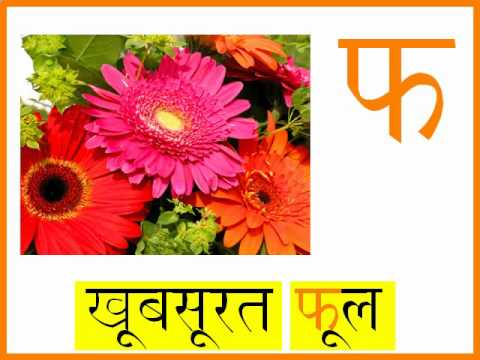 Learn The Hindi Alphabet - With Animations And Sounds! video
