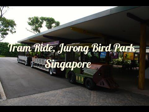 Tram Ride - Jurong Bird Park , Singapore
