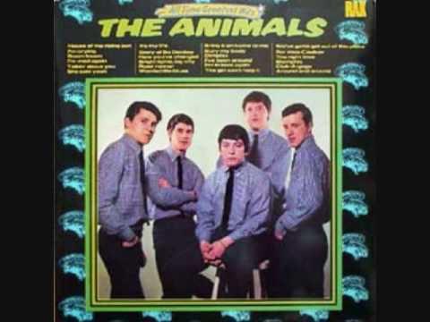 Animals - F-E-E-L