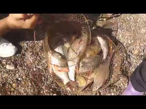 отдых и рыбалка дикарем балхаш