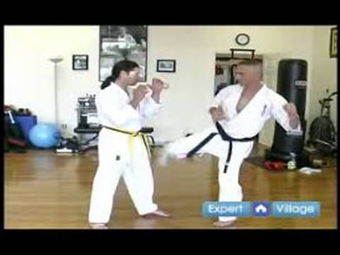 Beginner Kyokushin Karate Techniques : How to Do a Low Kick in Kyokushin Karate Image 1