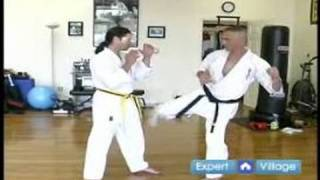 Beginner Kyokushin Karate Techniques : How to Do a Low Kick in Kyokushin Karate