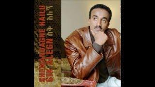 Shewandagne Hailu - Aynie (Ethiopian music)
