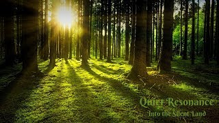 Into the Silent Land | Calming Music | Dreamscape | Study Music