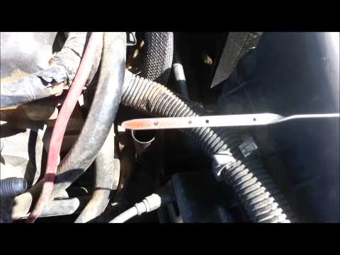 How to check and add transmission fluid on a 2003 Dodge Neon (2000 - 2005)