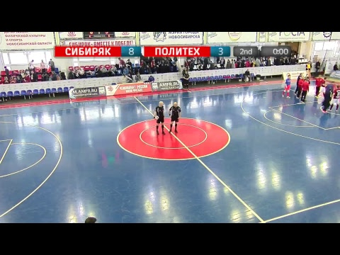 Суперлига. 14 тур. «Сибиряк» (Новосибирск) - «Политех» (Санкт-Петербург)
