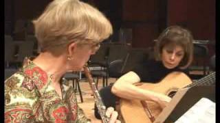 JoAnn Falletta Plays /  Virginia Symphony Orchestra