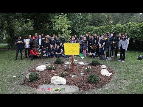 """Erinnerungsstätte: """"Garten der Integration"""" in Maria Ward"""