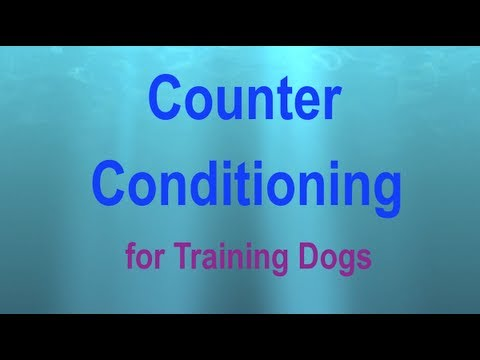 Counter conditioning definition meaning for Couter definition
