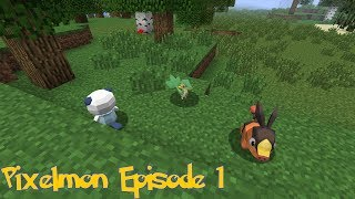 Pixelmon 3.0 With Friends - Episode 1: Humble Beginnings