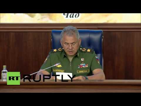 Moscow: Over 2000 militants in Syria 'neutralised' - Russian Defence Minister