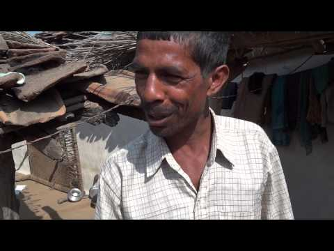 HARIT PRAYAS LIVE IMPACT: Increase in production through traditional seeds