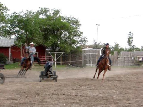 How To Build A Team Roping Dummy