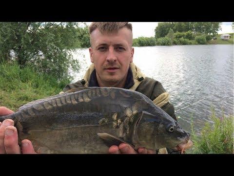 прикольная рыбалка на карпа видео