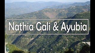 Natural Beauty of Nathia Gali & Ayubia in Pakistan (Galyat)