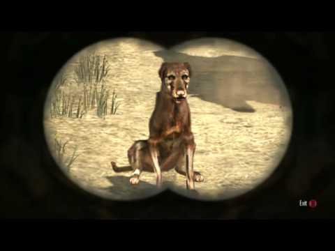 Watch Dogs Glitches