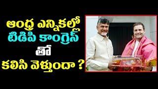 Chandrababu and Rahul Gandhi will join hands in Andhra Pradesh - Andhra Politics  - netivaarthalu.com