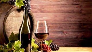 Vinho Novo para Odres Novos