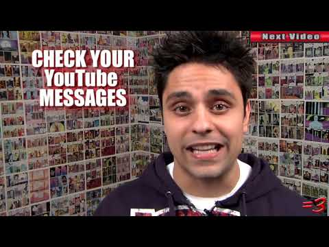 DOLPHIN RAPE! - Ray William Johnson video