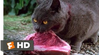 Pet Sematary (1989) - Killing Church Scene (8/10) | Movieclips