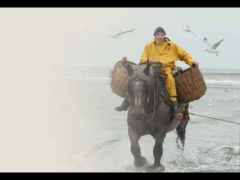 Fishing Like men! On horses