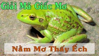 Giải Mã Giấc Mơ   Nằm mơ thấy ếch đánh con gì