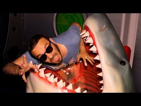 Köpekbalıklarıyla Aynı Suya Daldım!